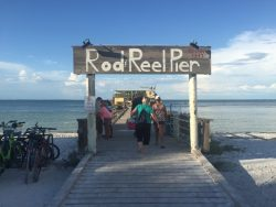 Experience the local feeling by eating at Rod and Reel Pier in Anna Maria City
