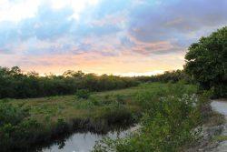 robinson preserve at dusk