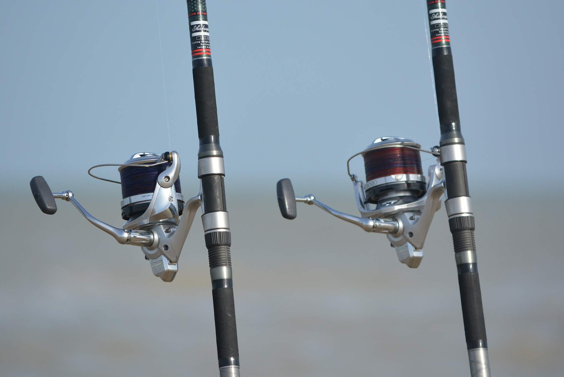 Close up of fishing poles in Anna Maria Island