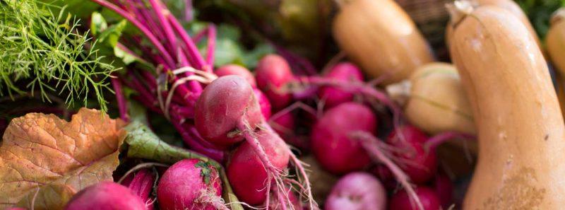 Fresh veggies at Bradenton Farmers Market in Florida